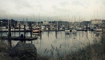 Docks of Coos Bay