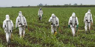 Roundup may cause cancer