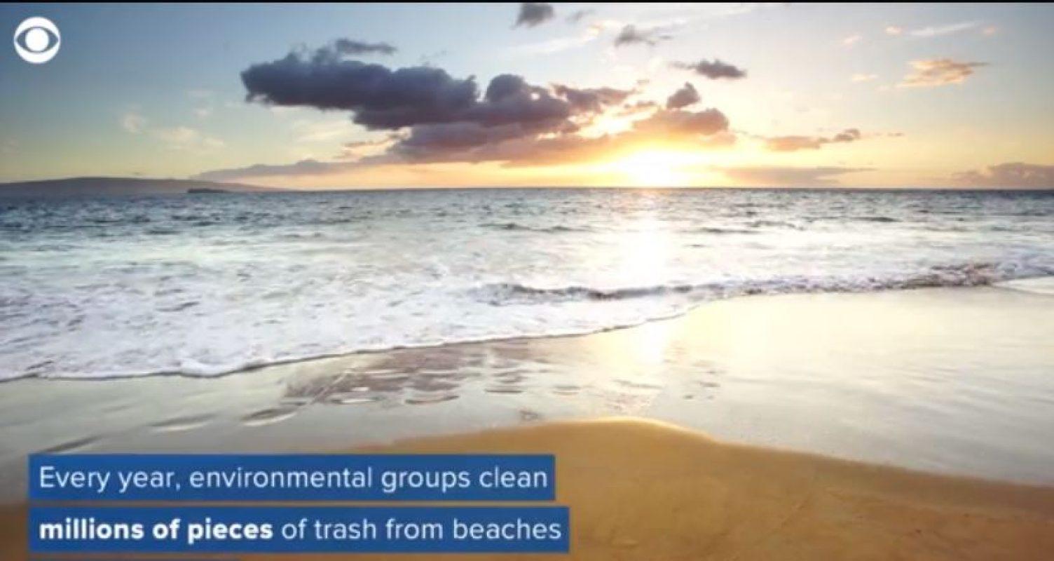 Kroger (Fred Meyer) moving to eliminate plastic bags