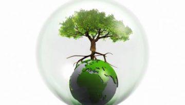 environment400