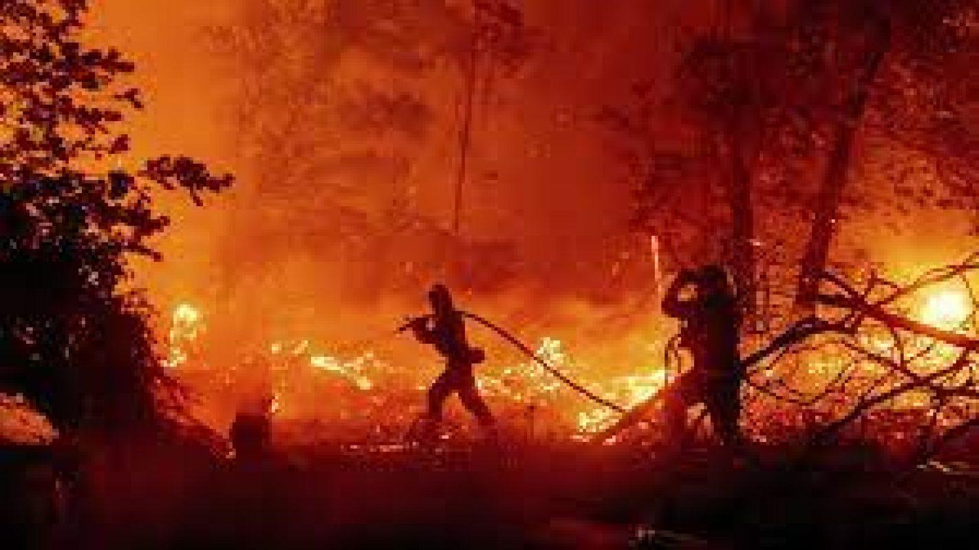 Wyden, Manchin, Cantwell, Feinstein Introduce Legislation to Help Prevent Catastrophic Wildfires