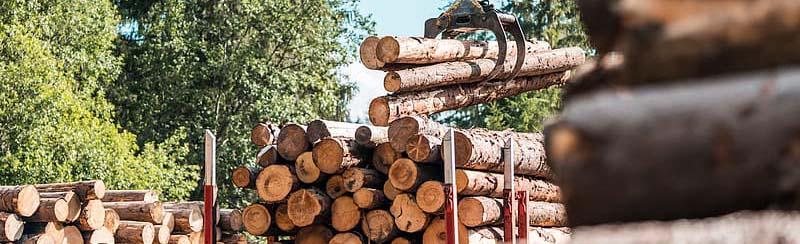 Timber tax cuts cost Oregon towns billions.